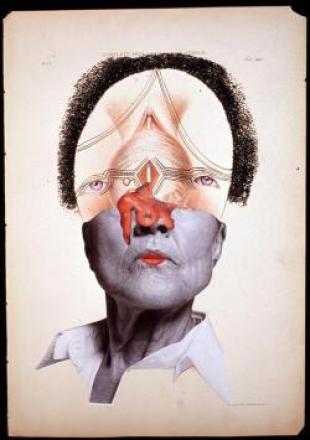 Wangechi Mutu, _Complete Prolapsus of the Uterus (Rahmin Tamamen Sarkması). 2004, sim, mürekkep, medikal illüstrasyon kağıdı üzerine kolaj, 46 x 31 cm