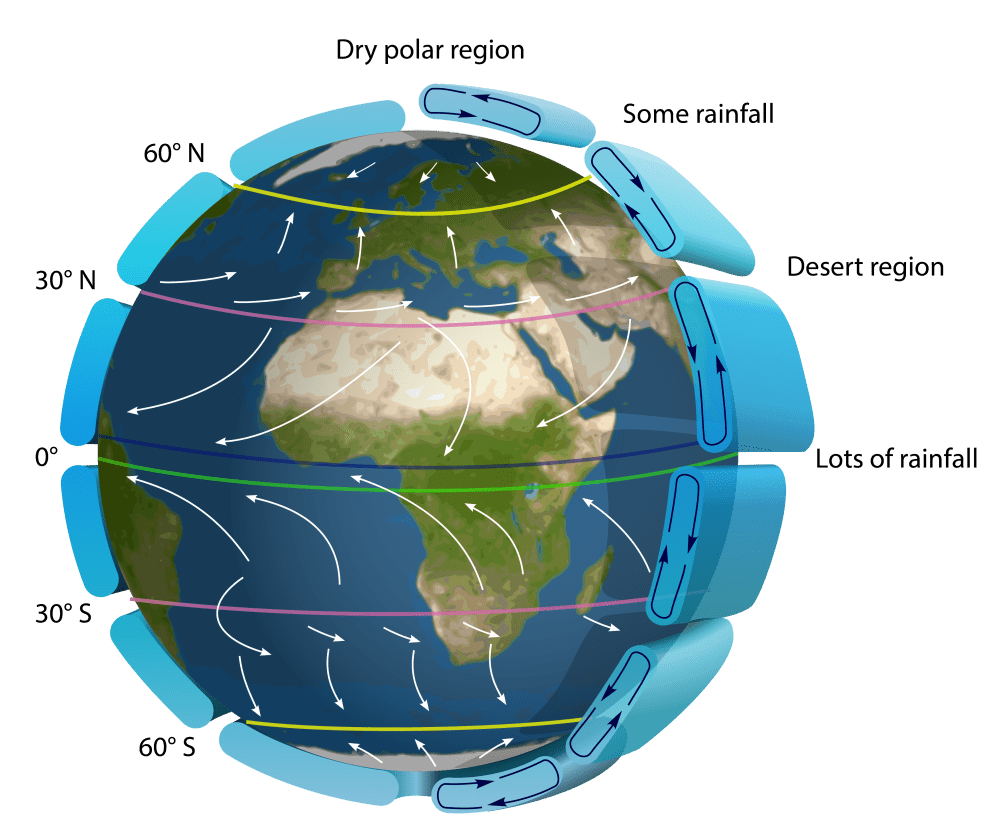 medium resolution of Climate (article)   Biogeography   Khan Academy