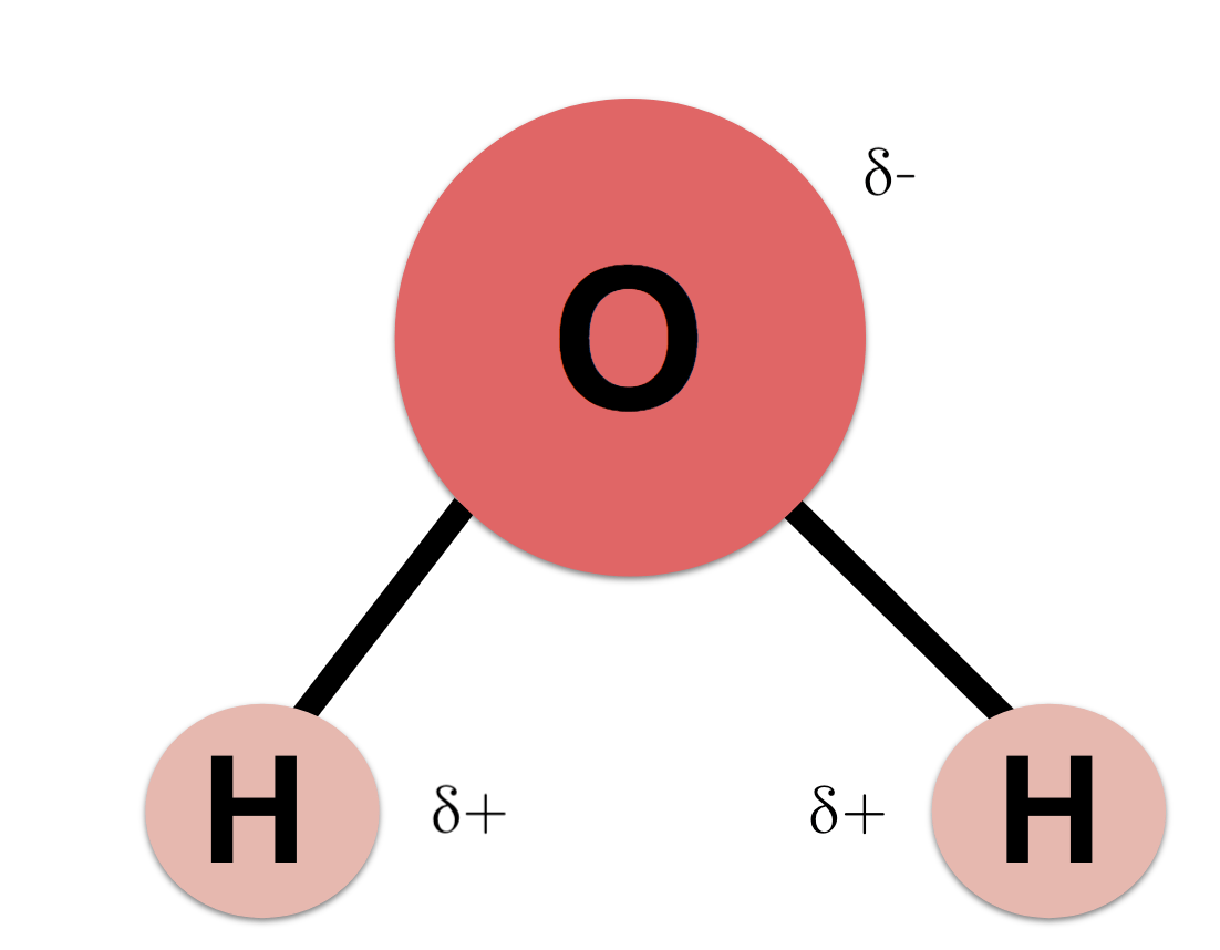 hight resolution of diagram of a single water molecule h2o