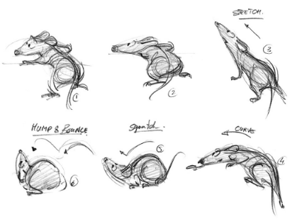 Six illustrations of a rat in different body positions.