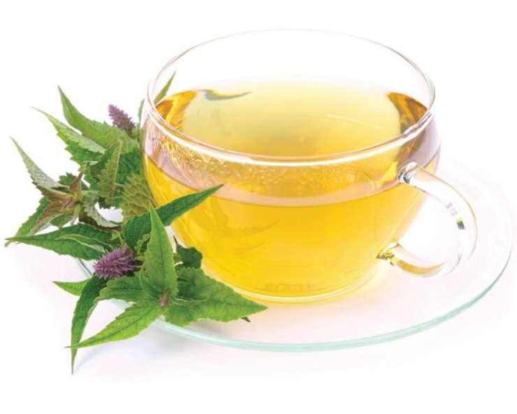 Čaj iz ožepka za odpravljanje sluzi v dihalnih poteh
