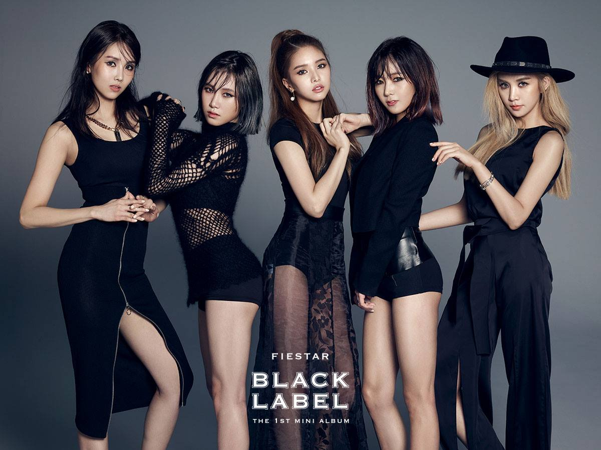 https://i0.wp.com/cdn.koreaboo.com/wp-content/uploads/2015/02/FIESTAR-Black-Label.jpg