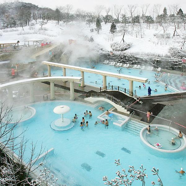 Jisan Forest Ski Resort Skisnowboardsnowsledfree time