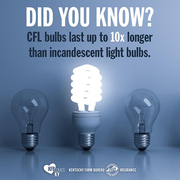 Fluorescent Light Bulb Disposal