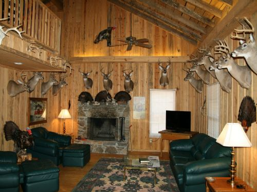 283 Acre Hunting Camp With Cabin  Land for Sale  Mcewen