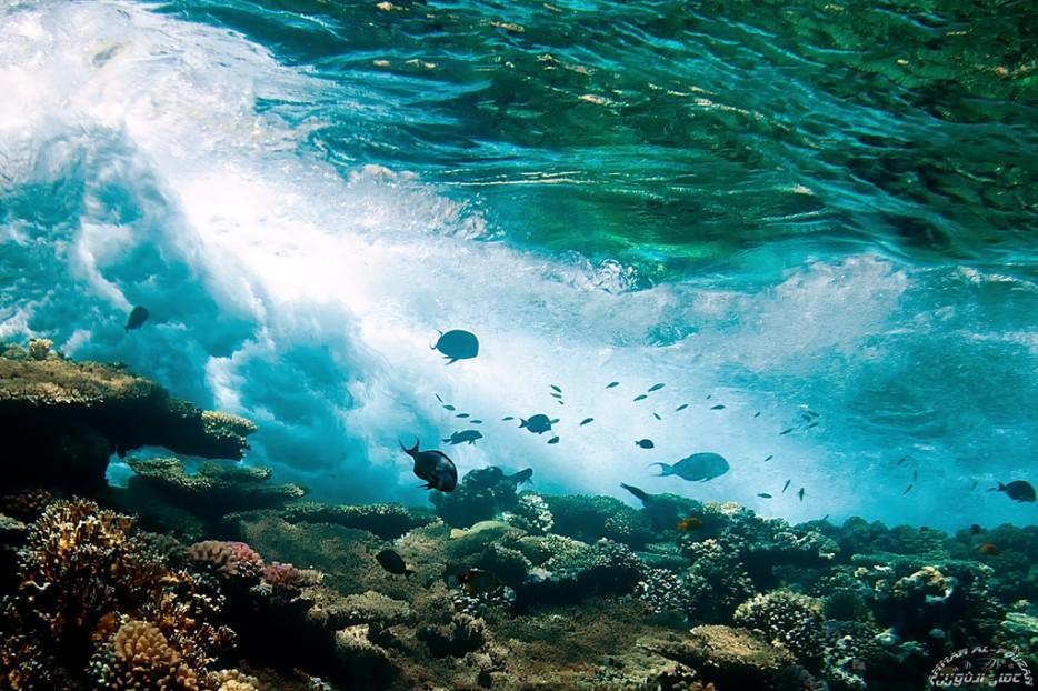 Playas cristalinas 31