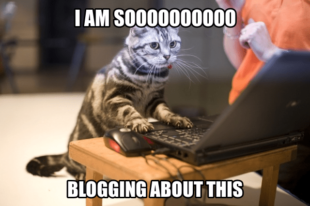Image result for writing blog meme