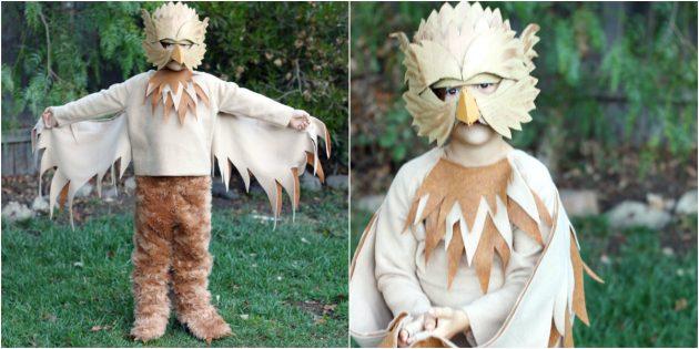 Жаңа жылдық костюмдер өзіңіз жасайды: Гриффин