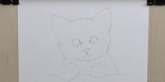 Ezen kiegészítő pontok használata, a macska csaptelep vázlata