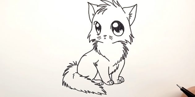 Hogyan kell felhívni egy anime macskát: balra, adjunk hozzá egy hátt, és alul - bolyhos farok