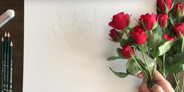 Наметьте очертания роз