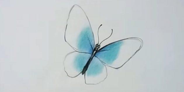 Подкрасьте крылья бирюзовым цветом