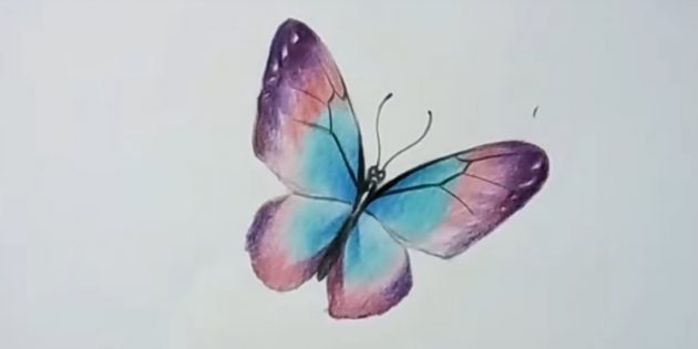 Чёрным карандашом нарисуйте узор на крыльях