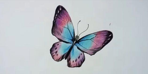 Osoitan kuvion siivet
