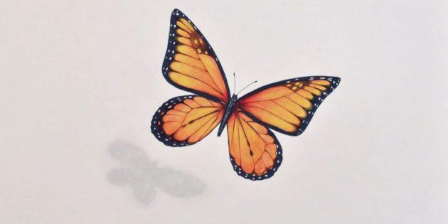 Как нарисовать реалистичную бабочку фломастерами и цветными карандашами