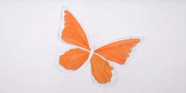 Draw the circles along the edges of the lower wings and the orange felt-tipper highlight parts