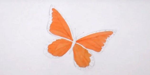 Vẽ các vòng tròn dọc theo các cạnh của cánh dưới và các bộ phận làm nổi bật tipper màu cam