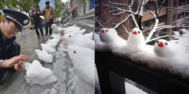 雪人自己这样做:鸟儿