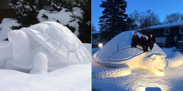 雪雪人物:乌龟