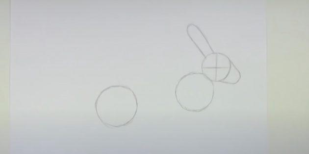 Sådan tegner du en hare: Bemærk dit øre