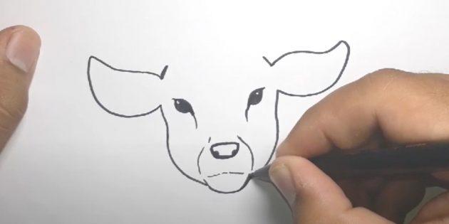 Miten piirtää hirvi: tehdä kutistuu silmistä nenään, liitä korvat kuonon kanssa