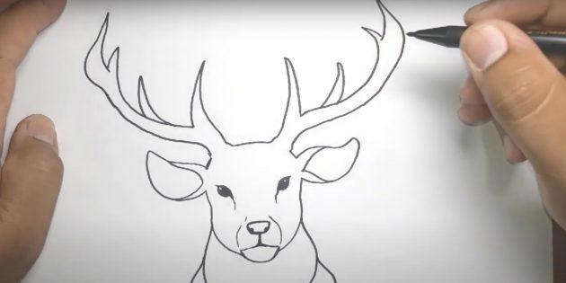Kuinka piirtää hirvi: Piirrä sarvet ja liitä linja