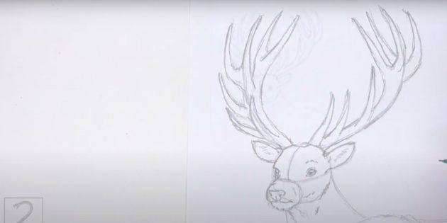 Kuinka piirtää hirvieläin: Piirrä oksat sarviin
