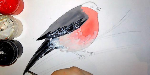 কিভাবে bullfinch আঁকা: skindsress স্তন