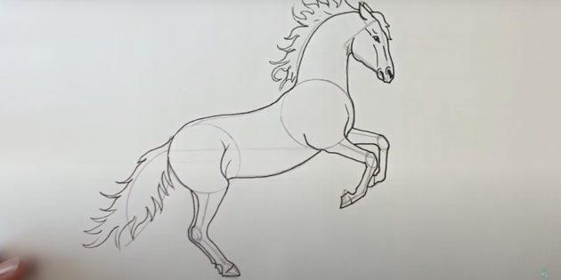 Hoe een paard te tekenen: Teken staart, rug en buik