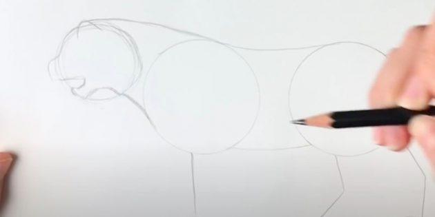 Саусақтарыңызға және өкшелеріңізге төсеніштер салыңыз
