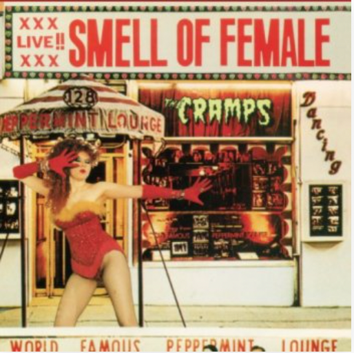 'You Got Good Taste' by The Cramps