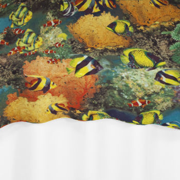 modern art chair covers and linens folding leg size barrier reef overlay by