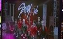Stray Kids、千葉雄大と韓国語で掛け合いも!日テレ「MUSIC BLOOD」リモート出演で大盛り上がり