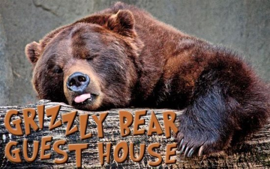 grizzly bear guest house
