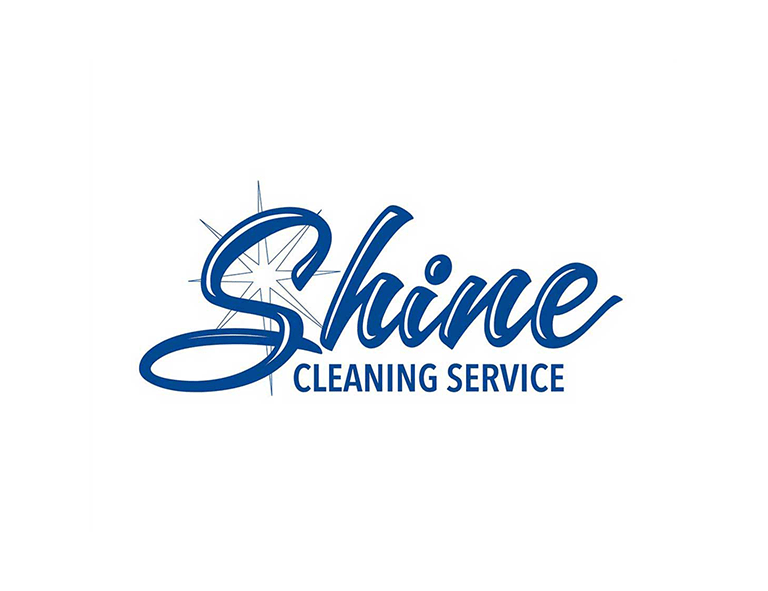 cleaning logo ideas make
