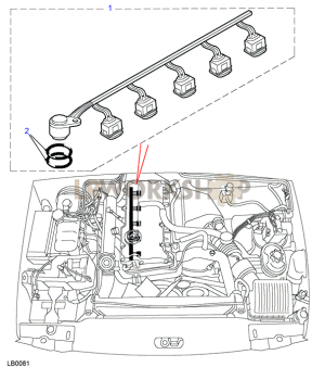 Harness Fuel Injector  Td5  Find Land Rover parts at LR