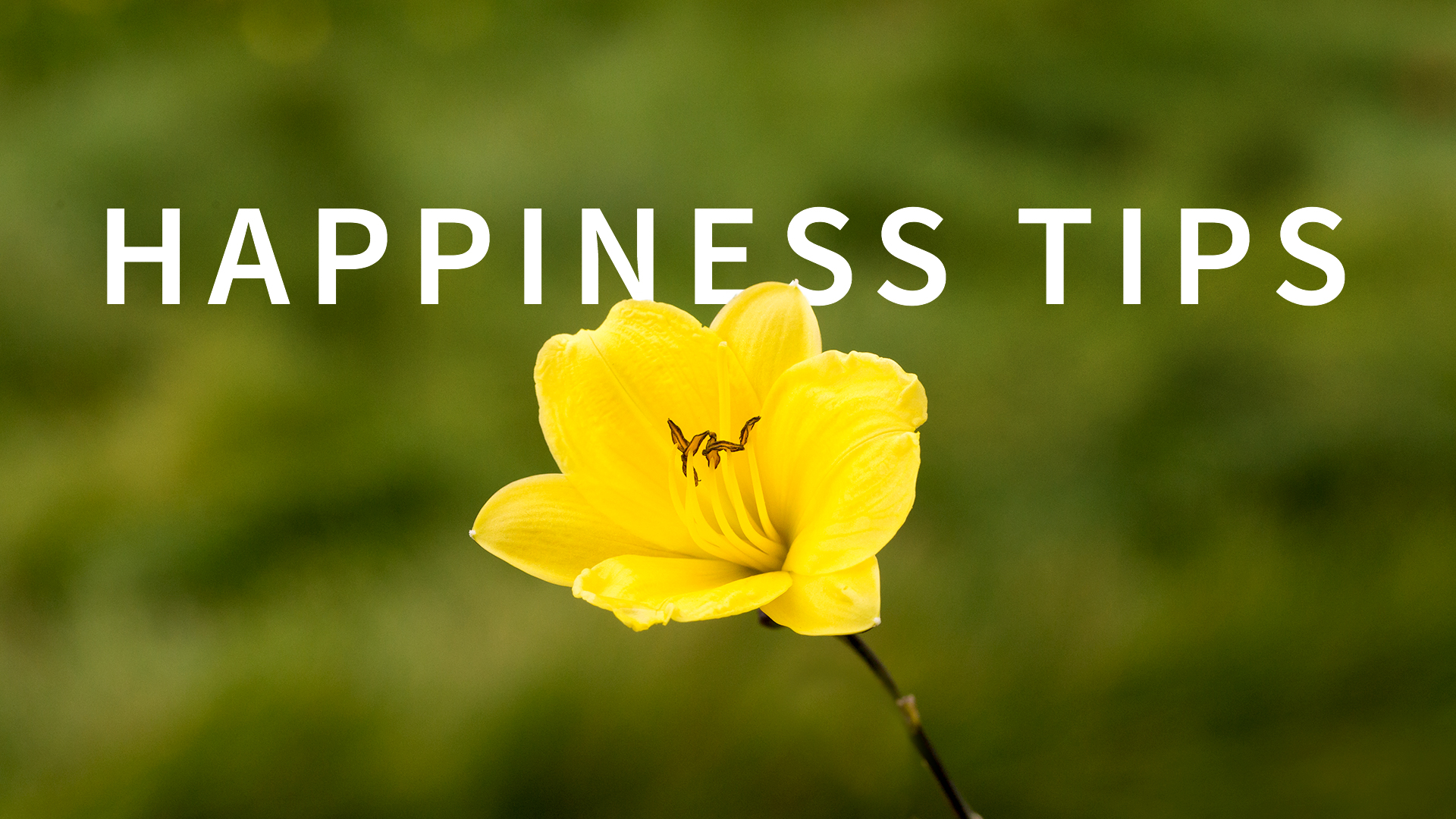 happiness tips weekly