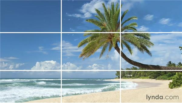 The Rule Of Thirds A Powerful Tool