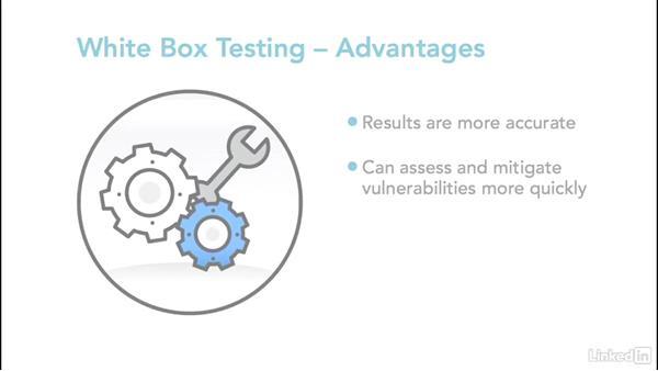 Black, gray, and white-box testing