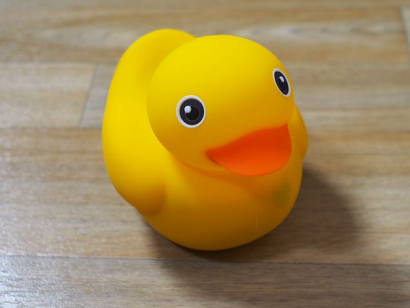 edwin the duck review