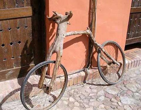 Tree-Branch-Bike