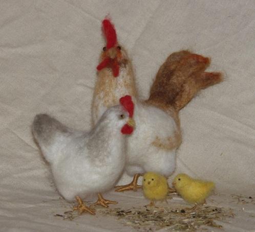 Hen-Cock