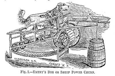 Dogpower3