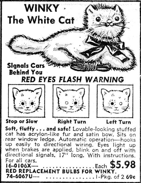 00-Winky The White Cat 475