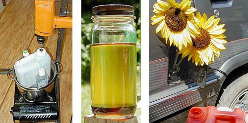biodiesel_20070311.jpg