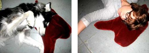 012B Bloodpud2