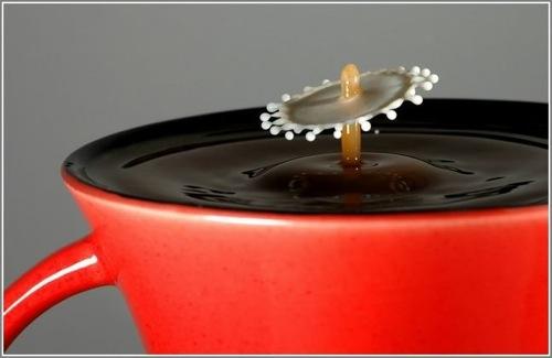 23 Milkmeetscoffee 26792