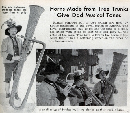 Med Tree Horns
