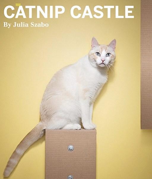 catnipcastle.png