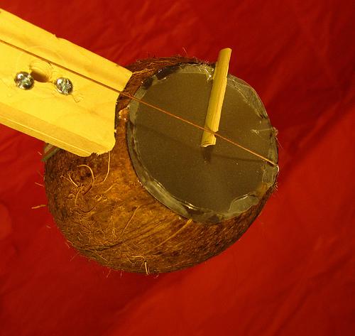 Coconut_banjo.jpg
